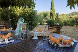 Your private table in the garden of the Domaine Languedoc. Enjoy the shady spot under the two trees.